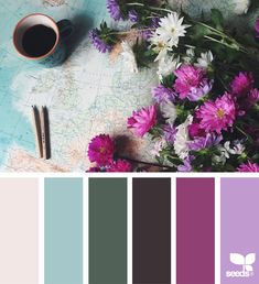Design Seeds + Color Atlas by Archroma® Colour Pallette, Colour Schemes, Color Combos, Design Seeds, Color Harmony, Color Balance, Pallett Ideas, Flora Design, Beautiful Color Combinations
