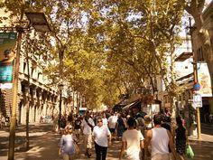 La #Rambla ! Grande avenue de #Barcelone ! Trop chaud à prendre en photo si t'as pas d'hélico ! Photos, Street View, Travel, Life, Pictures, Viajes, Destinations, Traveling, Trips