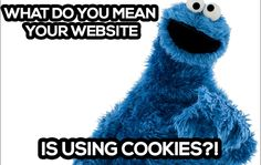 What do you mean your website is using cookies?! http://ift.tt/1p05nK8 #meme #marketing #humor #funny #cookiemonster #website #browser