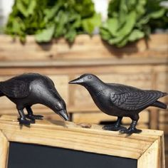 Cast Iron Crows, Set of 2