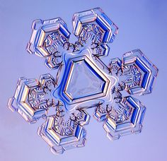 Guide to Snowflakes lots of resources at this site on snowflakes- good photos of the different elements/shapes of snowflakes. Can be used for small personal classroom non-commercial use snowcrystals.com
