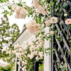 Inspiration: Tory's Garden in Southampton, New York #toryspring14 #nyfw