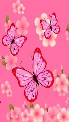 By Artist Unknown. Pretty Backgrounds, Pretty Wallpapers, Flower Backgrounds, Wallpaper Backgrounds, Colorful Backgrounds, Iphone Wallpaper, Bling Wallpaper, Flower Background Wallpaper, Butterfly Wallpaper