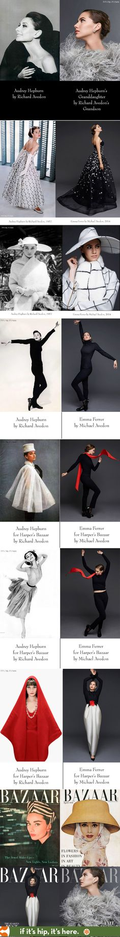 Audrey Hepburn photographed by Richard Avedon compared with Emma Ferrer (Audrey's granddaughter) by Michael Avedon (Richard's grandson). ©ifitshipitshere
