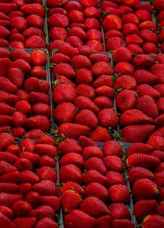 Beautiful Strawberries ❤