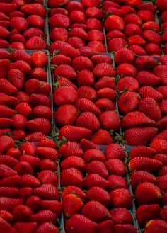 Red | Rosso | Rouge | Rojo | Rød | 赤 | Vermelho | Color | Colour | Texture | Form | Strawberries ❤
