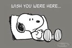 missing you snoopy - Bing Images