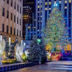 All is Calm All is Bright in Rockefeller Center by @mitzgami