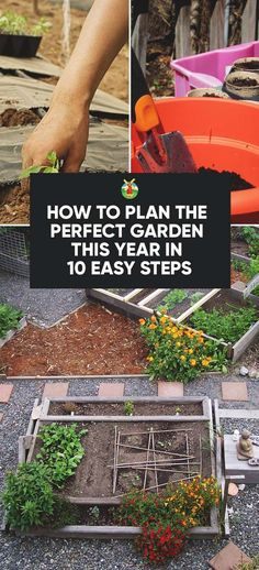 How to Plan the Perfect Garden This Year in 10 Easy Steps