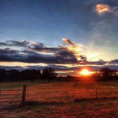 Rural Georgia sunset.