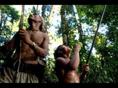 The Penan live in Sarawak, the Malaysian part of the island of Borneo. The Penan are just one of the tribal peoples of Sarawak, but they are the only nomadic tribe. Dieta Paleo, Tribal People, Archipelago, Survival, Youtube, Around The Worlds, Culture, History, Life