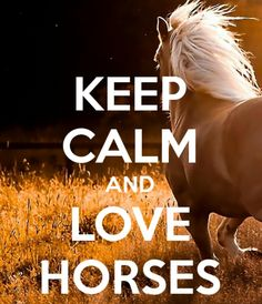 Keep calm and love horses.