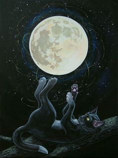 Cat playing with the moon Art Print by Irina Stetsenko - WorldGallery.co.uk