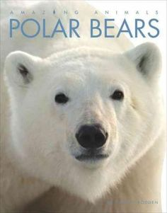Explores the appearance, behavior, and habitat of polar bears, Earth's biggest…