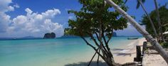 شركة سيف للسفر و السياحة - Thapwarin Resort