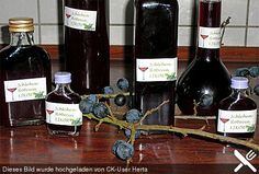 Schlehen-Rotwein-Likör