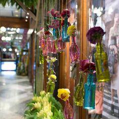 Glass Terrarium, Glass Vase, Colored Vases, Flower Show, Brisbane, Arcade, Centerpieces, Recycling, Colours
