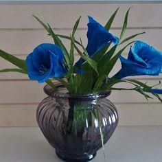 Flora Nordica (@_flora__nordica_) • Фотографије и видео записи на услузи Instagram Flora, Crepe Paper Flowers, Blue Flowers, Glass Vase, Instagram, Decor, Curly, Decoration, Plants
