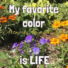 Choosing a favorite color is like choosing a favorite pet or child....just can't do it!! #favoritecolor #colorfulquotes  #lifeinbloom