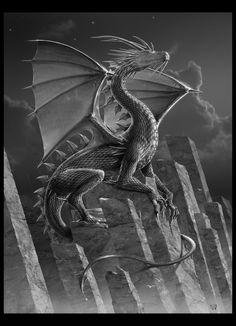 SILVER -Dragon Art- by ~wallace on deviantART
