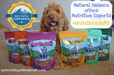 As a  pet parent do you ever get overwhelmed by the variety of dog food there is on the market? Choosing the right brand, formula, and flavor can be overwhelming. But, Natural Balance helps take the guess work out of feeding your dog by offering Nutrition Experts. Click the image to learn more. #ad  #WeBelieveinNB