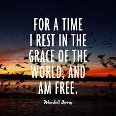 """""""For a time I rest in the grace of the world, and am free."""""""