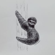 Hang in there, Buddy  #art #drawing #sketch #doodle #balckandwhite #illustration #pendrawing #draw #artist #design #inspiration #grey #animal #sloth #monday #hanginthere #buddy