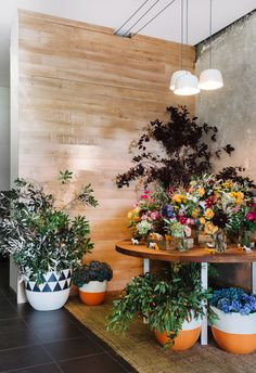I'm formulating a blog post on the come back of house plants. This pretty pic via The Design Files