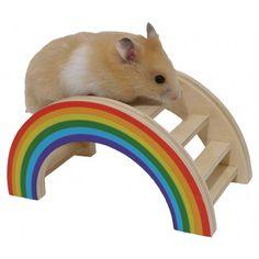 Dat uw huisdier aan het speelgoed gaat knagen betekent natuurlijk niet dat het speelgoed niet leuk en kleurrijk kan zijn. De speeltjes in de Woodies serie zijn kleurrijk en zijn gemaakt voor alle soorten knaagdieren.