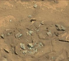 'Thigh Bone' on Mars Is Just Another Rock, NASA Says