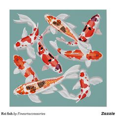 Koi Fish Discover Koi fish poster This work of art features koi fish in orange black and white. Change the background color in the custom section to match your decor. Koi Fish Pond, Koi Carp, Fish Ponds, Koi Fish Colors, Koi Painting, Blue Drawings, Orange Fish, Fish Wallpaper, Japanese Koi