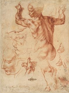 Studies for the Libyan Sibyl (recto); Studies for the Libyan Sibyl and a Small Sketch for a Seated Figure (verso), 1508–12 Michelangelo Buonarroti (Italian, 1475–1564) Italian Red chalk (recto); charcoal or black chalk (verso) 11 3/8 x 8 7/16 in. (28.9 x 21.4 cm) Purchase, Joseph Pulitzer Bequest, 1924 (24.197.2)