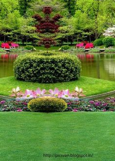 Image Result For Garden Wedding Background Hd Places Pinterest