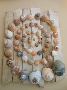Sea Crafts, Nature Crafts, Diy And Crafts, Arts And Crafts, Driftwood Wall Art, Driftwood Crafts, Seashell Art, Seashell Crafts, Seashell Projects