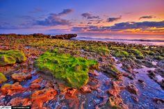 Colorful Sunrise - Coral Reefs Wallpaper ID 930042 - Desktop Nexus Nature