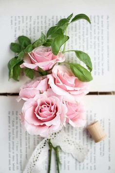 Pink roses tied with lace