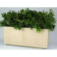 """Allied Molded Products St. James Rectangular Planter Box Size: 36"""" H x 72"""" W x 36"""" D, Color: Earth Red"""
