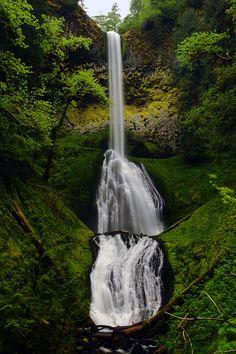 ✯ Pup Creek Falls - Oregon