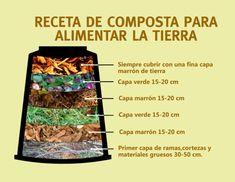 How to integrate a compost bin in the garden or balcony Eco Garden, Garden Boxes, Free Hand Rangoli Design, Forever Green, Growing Greens, Happy Flowers, Green Life, Green Plants, Winter Garden
