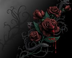 bloody rose   Blood and Roses, blood, rose, snake