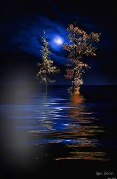 Beautiful Nature Wallpaper, Beautiful Landscapes, Nature Pictures, Beautiful Pictures, Shoot The Moon, Moon Magic, Moon Art, Moon Moon, Blue Moon