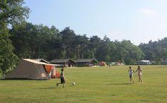 De Lemeler Esch, 5 sterren natuurcamping https://www.vis-vakanties.nl/camping/lemeler-esch-natuurcamping/