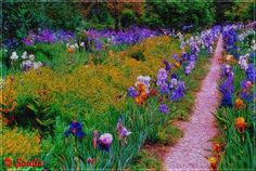 Soulis: Impression, Monet's Garden II by 0soulis0