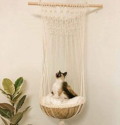 One of a kind handmade macrame cat bed. Black & white rope, coral or natural cot… ) ) One of a kind handmade macrame cat bed. Black & white rope, coral or natural cot…and pets hot calendar 2018 october malayalam, and pets zodiac movie trailer, pe Crazy Cat Lady, Crazy Cats, Cat Playground, Cat Room, Macrame Design, Pet Furniture, Cheap Furniture, Discount Furniture, Diy Stuffed Animals