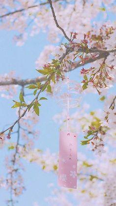 Ideas Landscape Photography Wallpaper Scenery For 2019 Flowers Wallpaper, Anime Scenery Wallpaper, Aesthetic Pastel Wallpaper, Aesthetic Backgrounds, Aesthetic Wallpapers, Wallpaper Backgrounds, Aesthetic Japan, Japanese Aesthetic, Flower Aesthetic