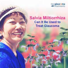Is #Salvia Miltiorrhiza (Dan Shen) Effective In The Treatment of #Glaucoma? Read more: http://new-glaucoma-treatments.com/is-salvia-miltiorrhiza-dan-shen-effective-in-the-treatment-of-glaucoma/#ixzz3NN2aelww