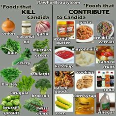 Foods that Kill Candida and Foods that Contribute to Candida! #LighthouseHealth www.LighthouseHealth.com [The foods on the right were my old diet (they gave me high cholesterol, too); the foods on the left now make up my new diet. Hoping to feel better very soon!]