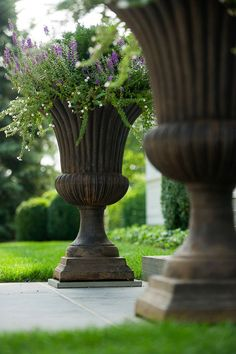 Container Gardens | Urns | Judith D Collins