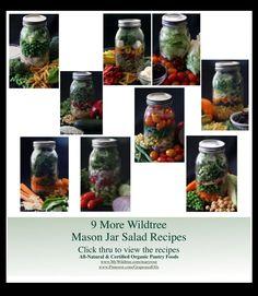 Wildtree Mason Jar S