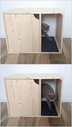 Cat Litter Box Cover Pet Furniture Cat House Modern Litter Box Cabinet made of spruce wood Katze Wurf Box Cover Haustier Möbel Katzenhaus moderne Wurf Litter Box Covers, Cat Litter Boxes, Cat Litter Cabinet, Litter Box Enclosure, Cat Toilet, Wood Cat, Pet Furniture, Furniture Plans, Modern Cat Furniture